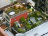 rooftop_nyc_291535