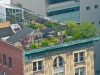 rooftop_nyc_291545